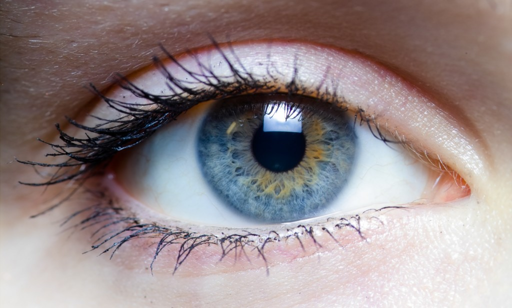 iris_-_left_eye_of_a_girl